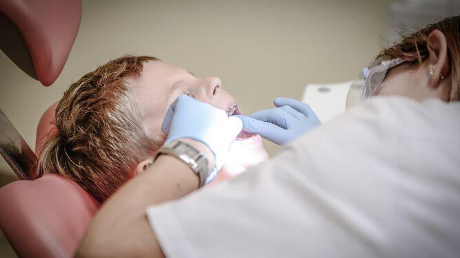 revision-dental